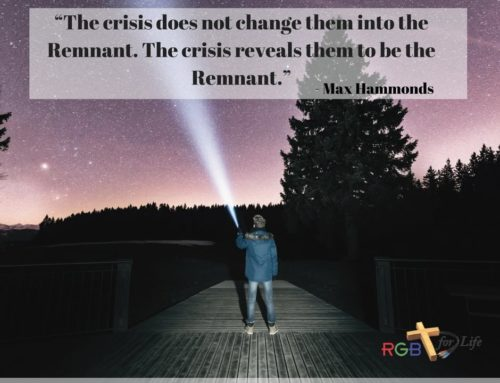"""The crisis does not change them into the Remnant. The crisis reveals them to be the Remnant."""