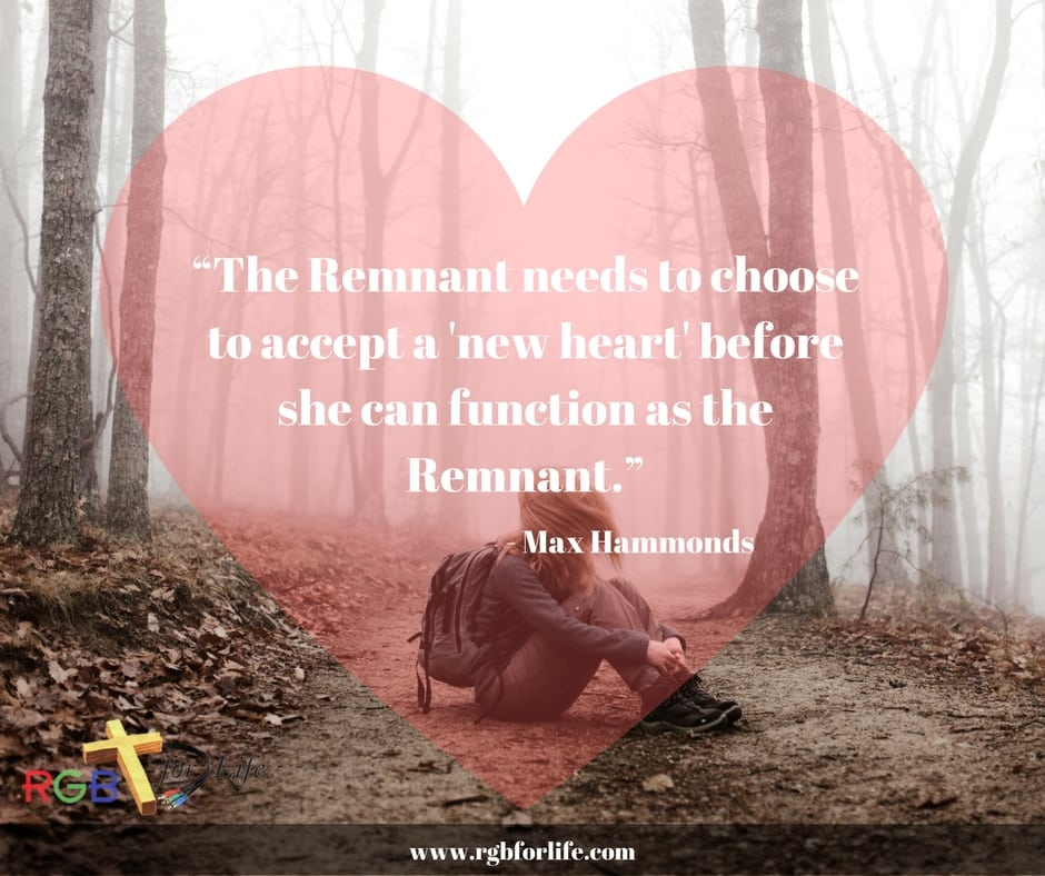 """RGB4life - """"The Remnant needs to choose to accept a """"new heart"""" before she can function as the Remnant."""""""